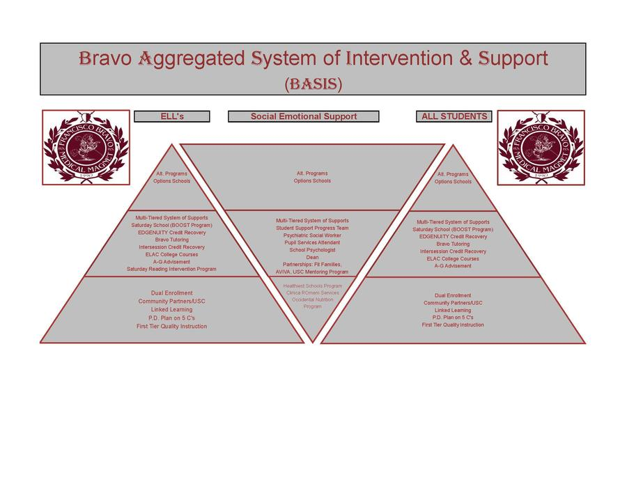 Bravo Aggregated Systems of Intervention and Support